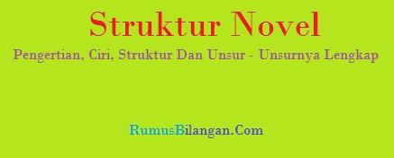 Struktur Novel