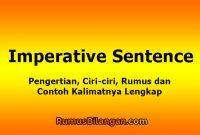 Imperative Sentence