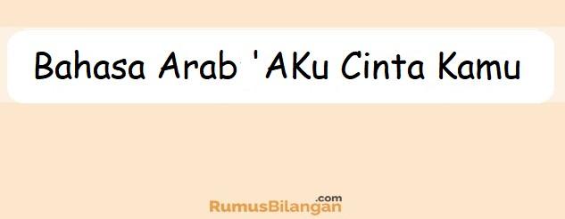bahasa arab aku cinta kamu dilengkapi dengan kosakatanya
