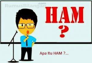 Apa Itu HAM