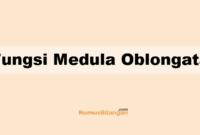 Fungsi Medula Oblongata