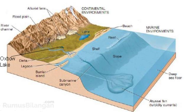 Faktor yang Menyebabkan Terjadinya Sedimentasi Laut