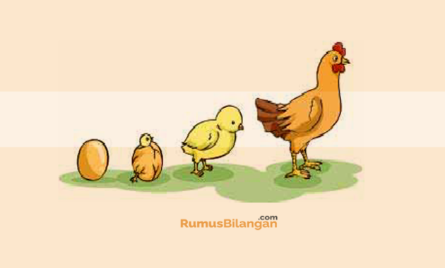 Sistem Pertumbuhan Serta Perkembangan Pada Hewan