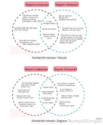 Perbedaan dan persamaan dalam karakteristik negara-negara ASEAN
